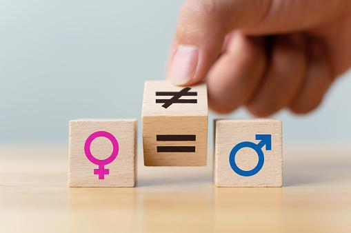 A origem dos Direitos Humanos das mulheres